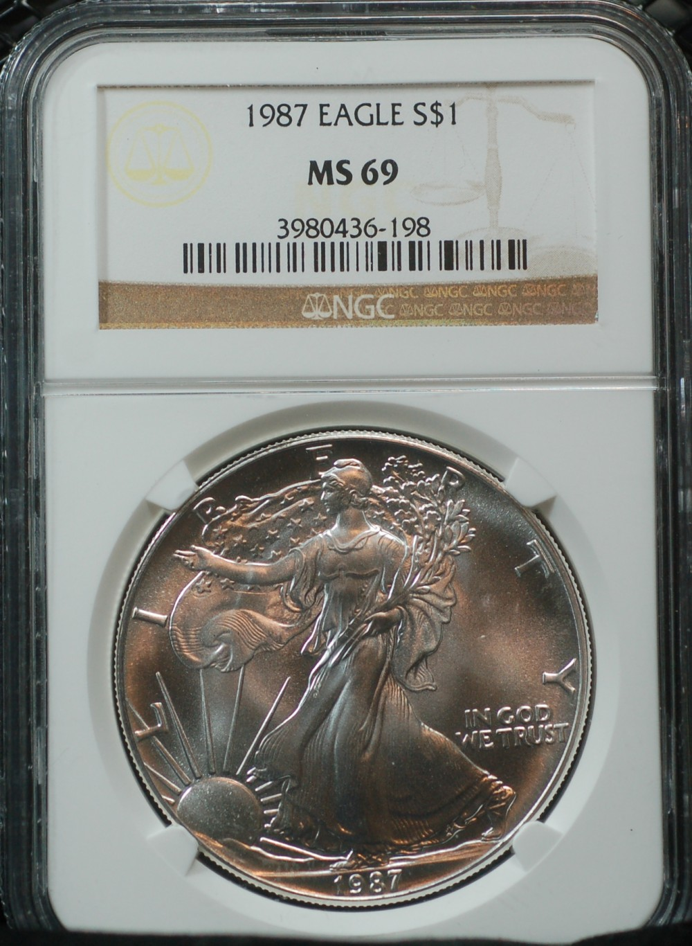 1987 Silver Eagle NGC Brown Label for sale.